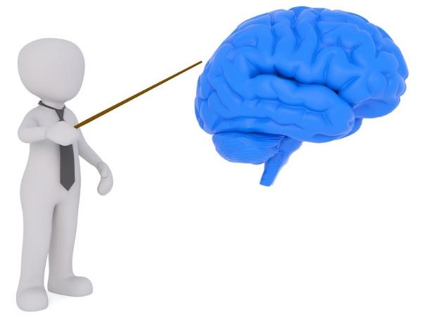 O que são sabotadores de emagrecimento? - Como o cérebro funciona