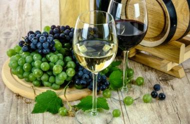 Os benefícios que o vinho traz para a saúde