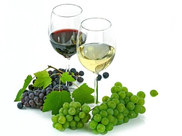 Os benefícios que o vinho traz para a saúde - Vinho tinto e branco